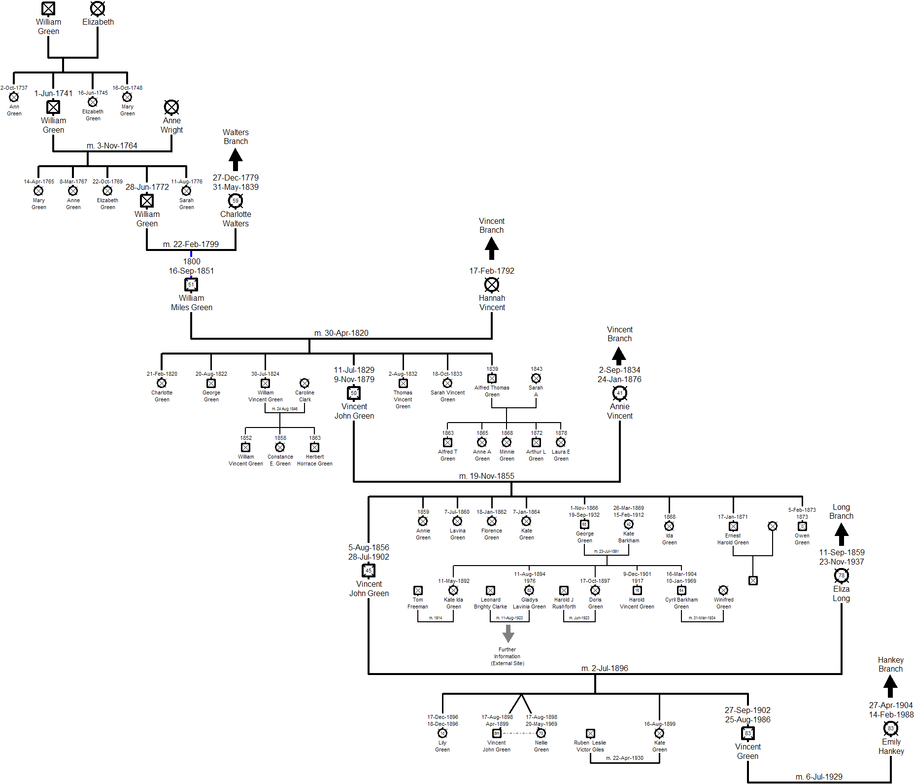green branch family tree and history